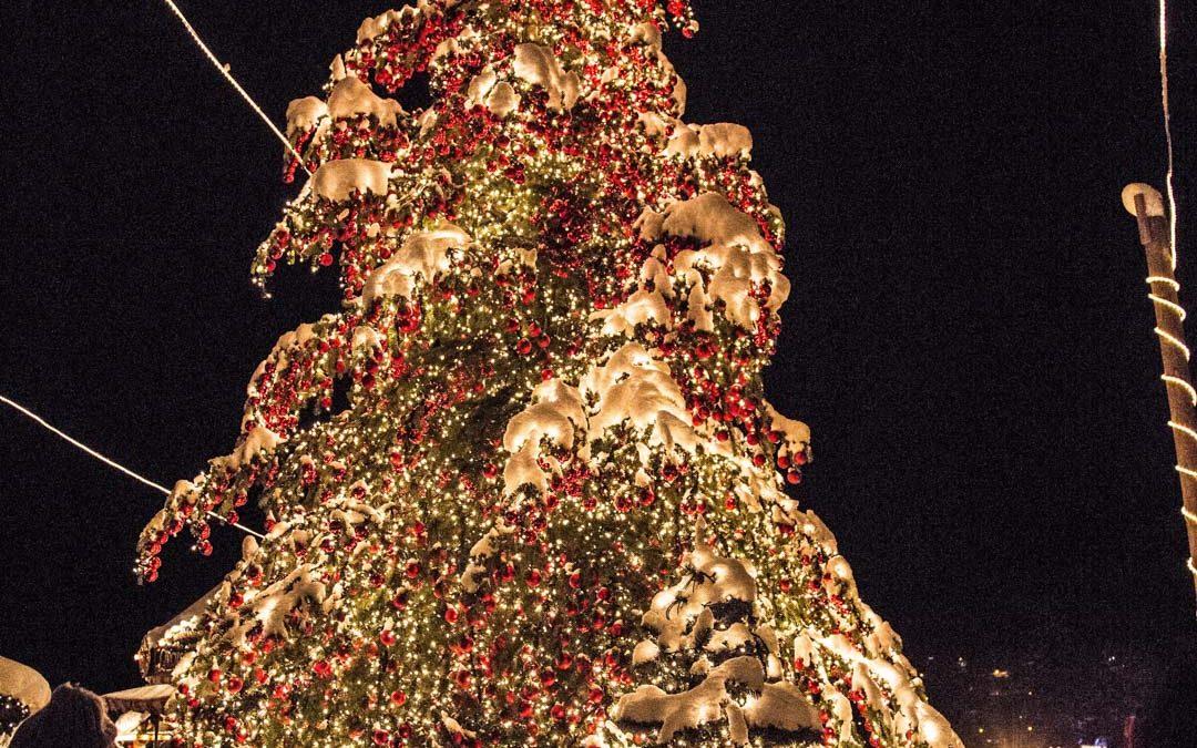 Riesen Weihnachtsbaum im Lichterdorf